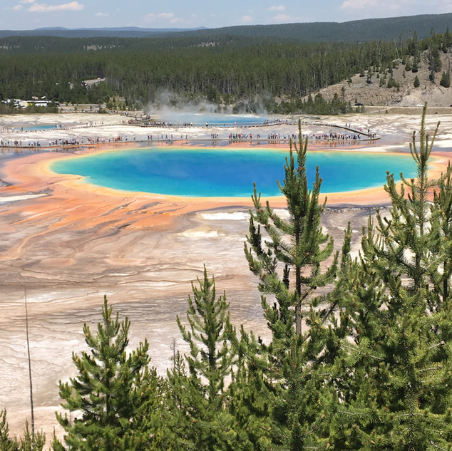 Grand Prismatic Spring Overlook Yellowst