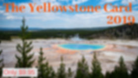 The Yellowstone Card.jpg