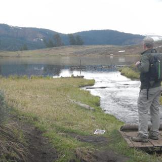Trout Lake View Yellowstone National Par