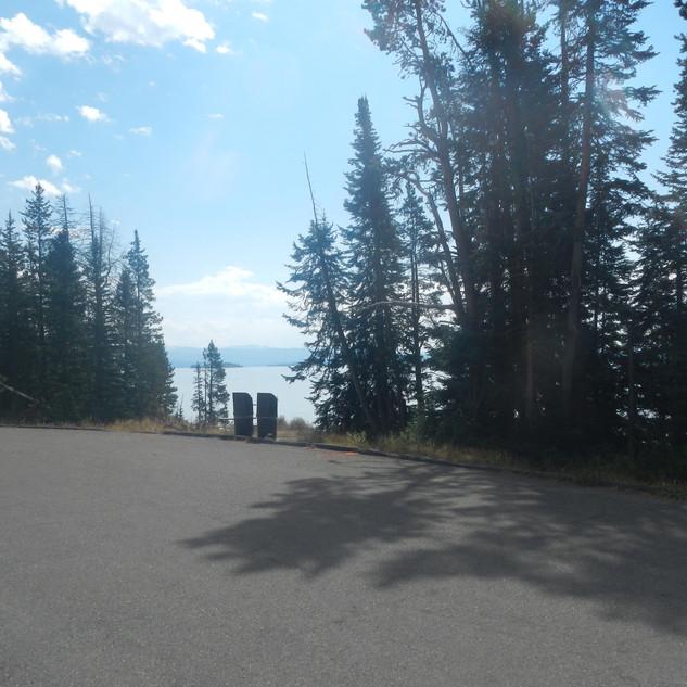 Spruce-Fir Exhibit Picnic Area Trash Bin