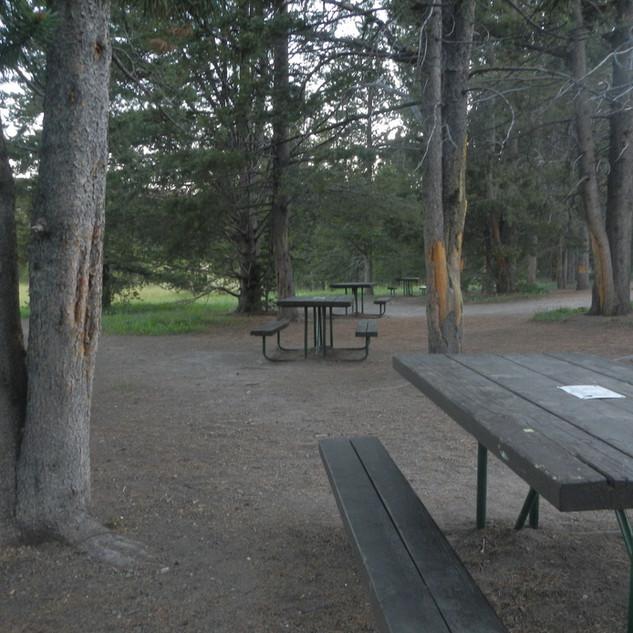Virgina Cascade Drive Picnic Area.JPG