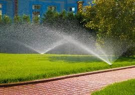 מדוע מבזבזת המועצה-המקומית מים וכסף?