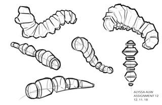 Caterpillar Basic Shape Study