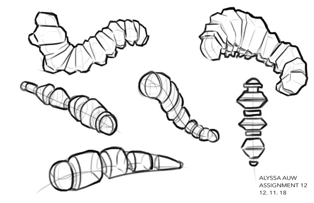 Caterpillar Basic Shape Study