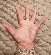 Kats Hand Competition.jpg