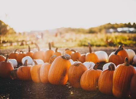 Eyes on Pumpkins!