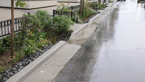 Rain gardens and infiltration basins to reduce flooding in southeast Queens