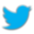 Light blue new Twitter social media bird logo and icon - The Best Marketing Agency