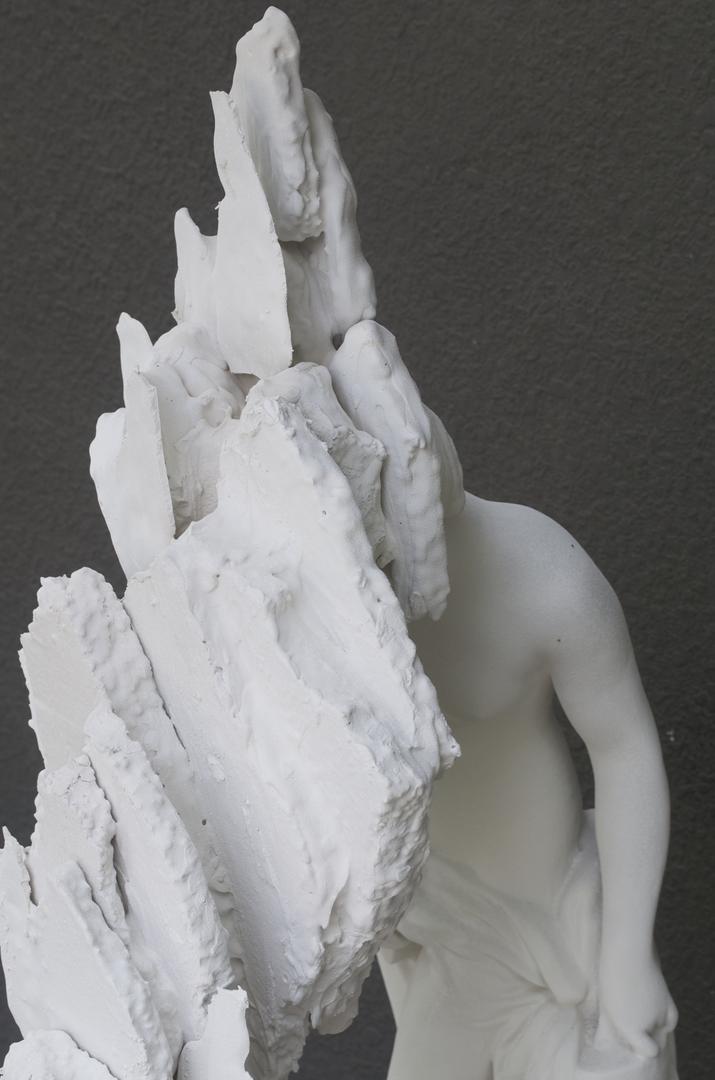 Figure 1 (detail)
