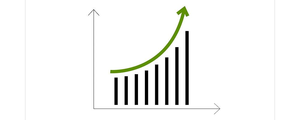 profitable-franchise-service-options