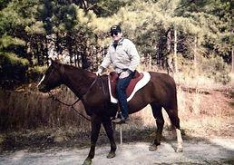 Sport-Saddle-Bob-705x497.jpg