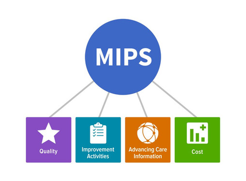 2017 MIPS Performance