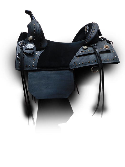 Dark Horse Saddle Designed By Dianne Marshall