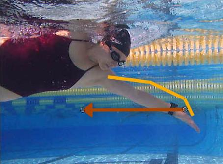 Just a Few Of My Favorite Swim Technique Videos