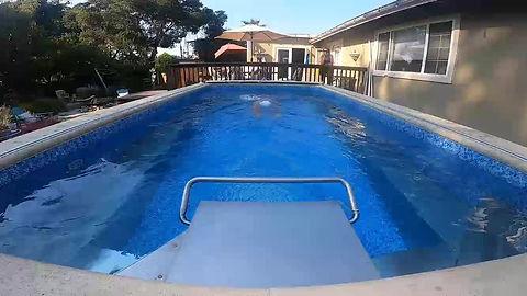 Endless Pool for Swim Technique Analysis