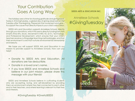 #GivingTuesday for SEEDS Arts & Education