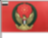 FLAG CLIENT UAE ARMY.png