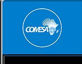 COMESA FLAG CLIENT VISUALS.png
