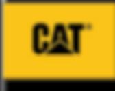 FLAG CLIENT CAT.png