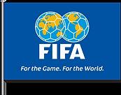 FIFA FLAG CLIENT VISUALS.png