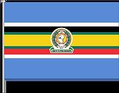 FLAG CLIENT EAC.png