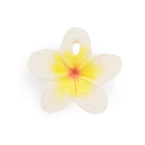 Hawaii la fleur - Oli & Carol