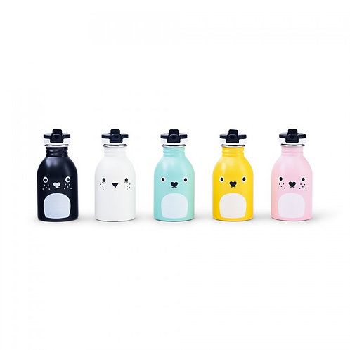 Gourde 250ml - Noodoll x 24Bottles