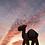 Thumbnail: Pole Pole chameau en bois - T Lab