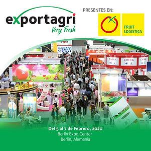 exportagriferia2.jpg