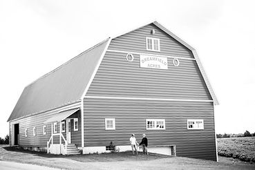 Marshall wedding barn