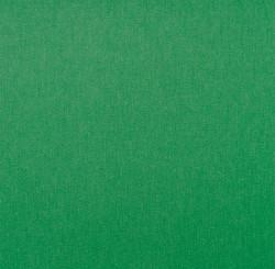 Liso-verde-bandeira--ref-24.jpg