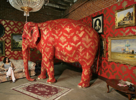 The Elephant in the Room?