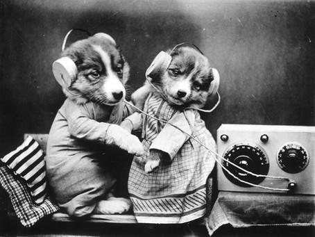 Hey mum... I'm on the radio!!!