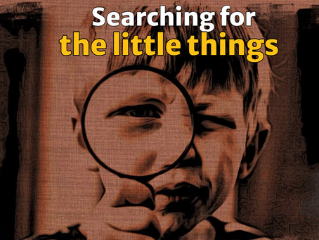 Searching for the Little Things