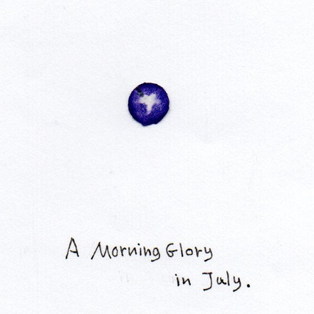 What I Found in a Bag of Confetti -morning glory