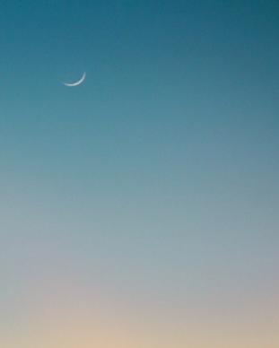 New Moon copy.png