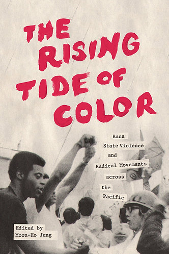 The Rising Tide of Color: Race, State Violence and Radical Movements [eBook]