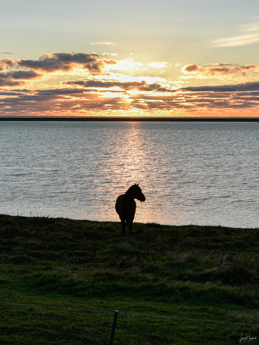 Miquelon-Langlade