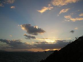 March 2004 sunset-bitterfly swarm.jpg