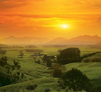 Hauraki Plains Front Image72.jpg