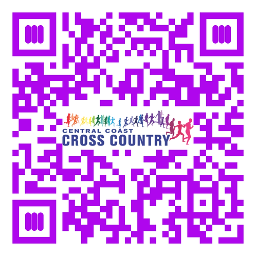 QR code CCXC homepage