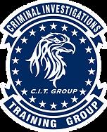 citgroup criminal investigations training group
