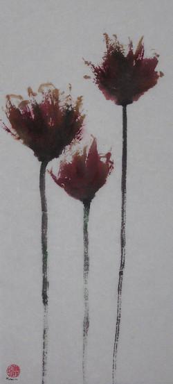 tulipes 26x60cm