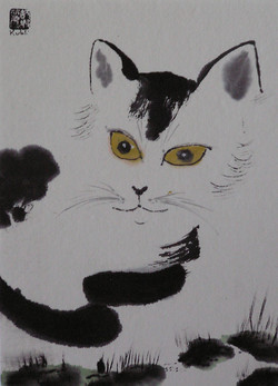 portrait du chat