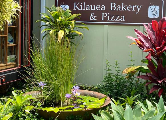 Kilauea Shopping
