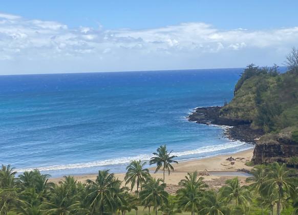 National Tropical Botanical Garden Beach