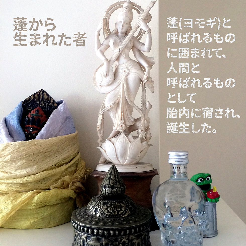 mugwort born JAP.jpg