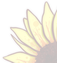 Sunflower Corner.png