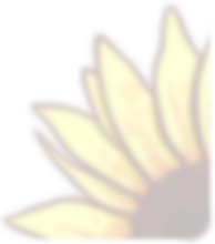 Sunflower Round Corner.png