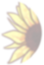 Sunflower Sign Up.png